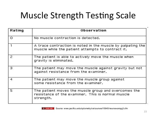 nursing assessment strength - Google Search