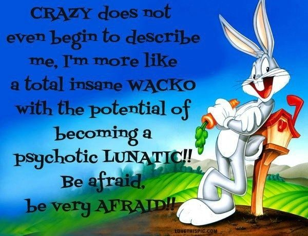 Crazy Funny Quotes Quote Cartoons Funny Quote Funny Quotes Looney Toons Bugs Bunny Weird Quotes Funny Bunny Quotes Friendship Quotes Funny