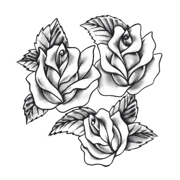 Rose Tattoo Rose Tattoos Traditional Rose Tattoos Tattoos