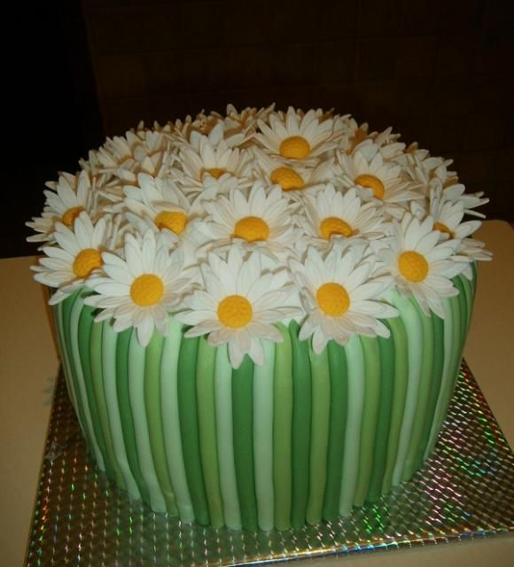 Yum Cake Designs