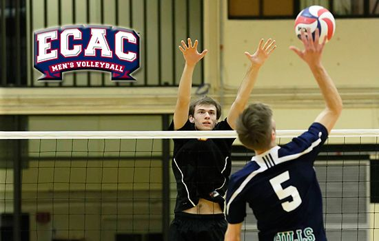 Potts Named Ecac Player Of The Week Mens Volleyball Volleyball Team Players