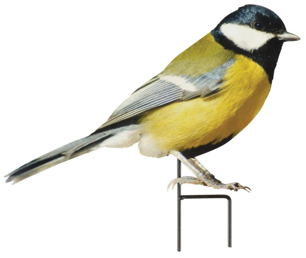 Oiseau décoratif sur pique sur | bb | Pinterest | Oiseau decoratif on