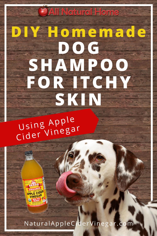 Diy Natural Dog Shampoo For Itchy Skin All Natural Home Homemade Dog Shampoo Dog Shampoo Itchy Skin Natural Dog Shampoo