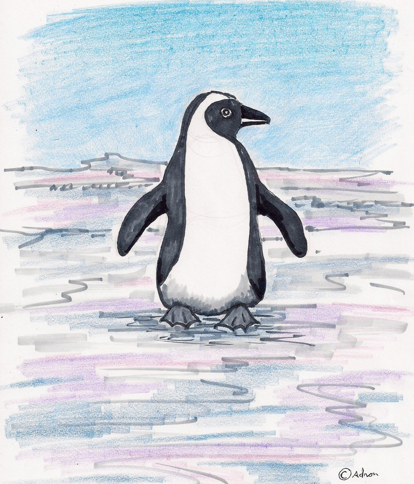 How To Draw A Penguin For The Young Artist