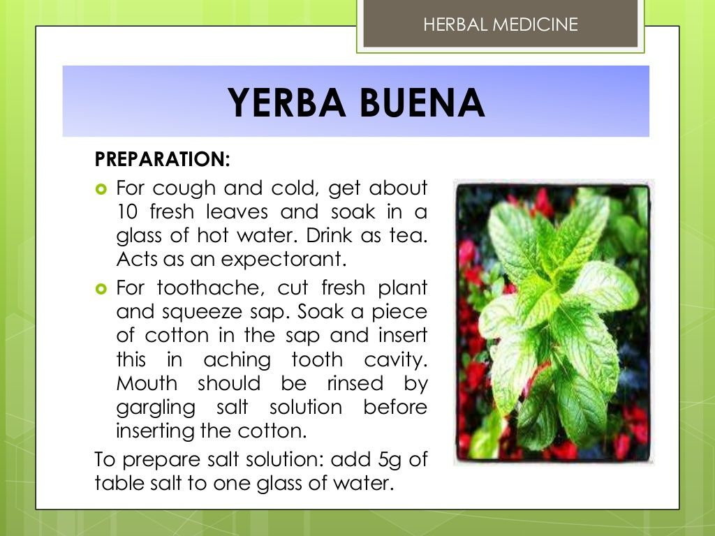 Herbal medicine yerba buena preparation for cough and