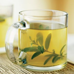 Lemon Verbena and Mint Tisane | Williams-Sonoma