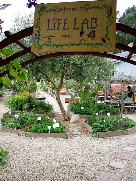 Great Check Out How School Gardens Are Succeeding In Santa Cruz! Sign Up For The  Santa