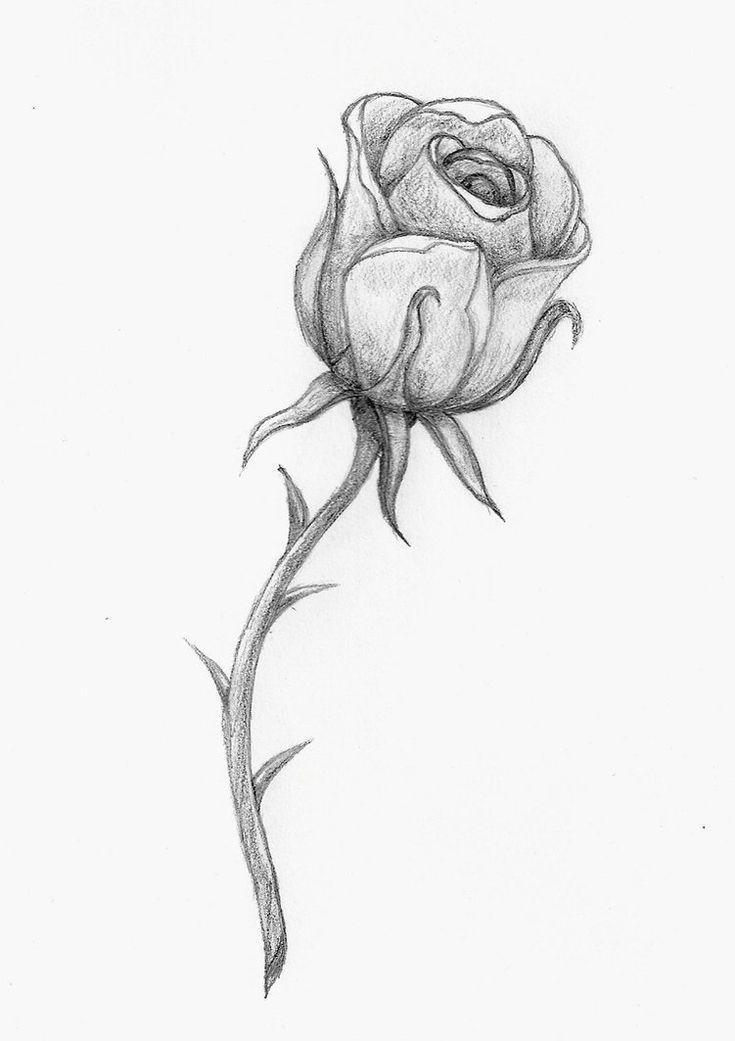 Photo of Rose tattoo stencil