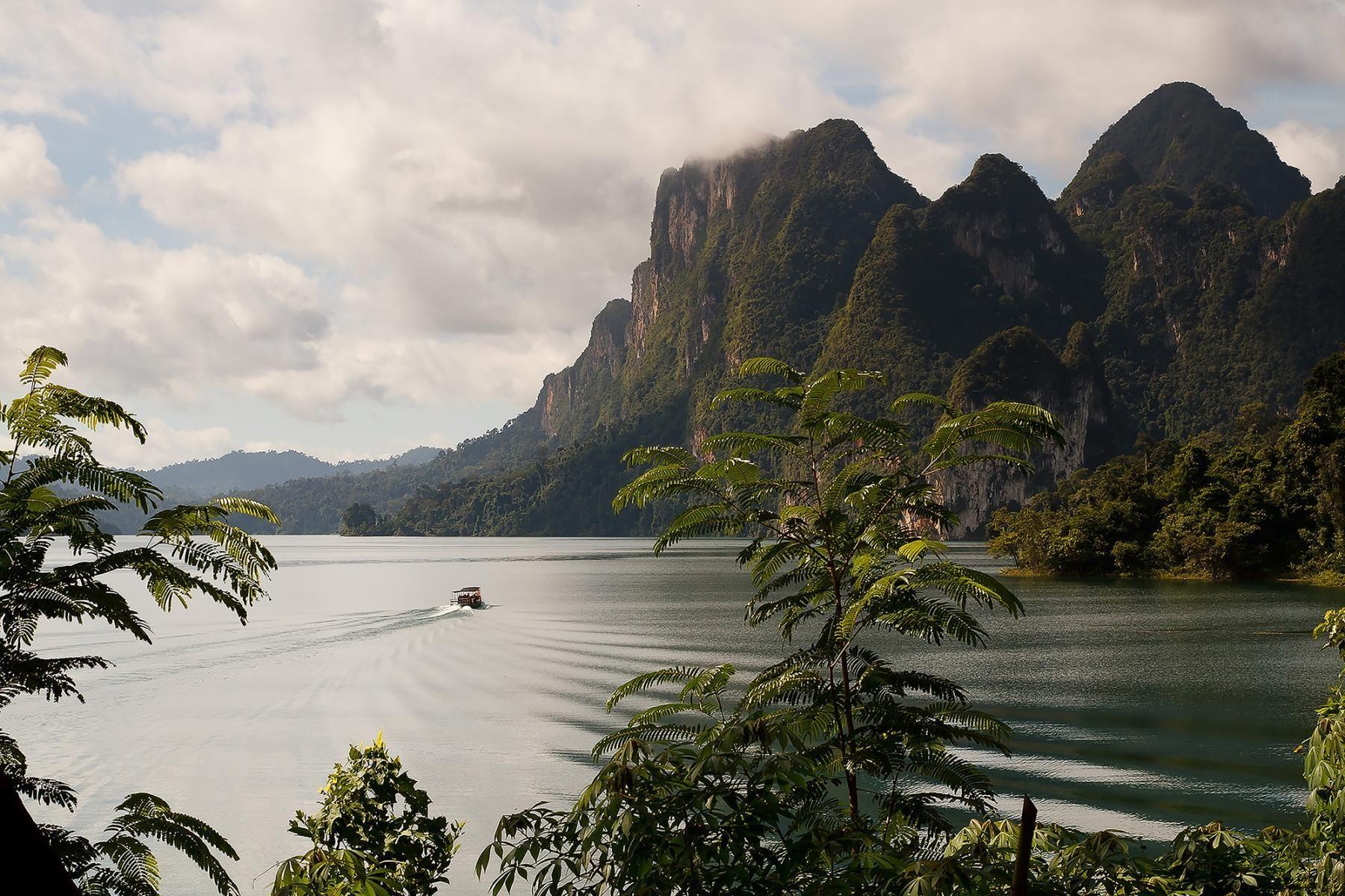 Nature - KHAO SOK National Park, Thailand