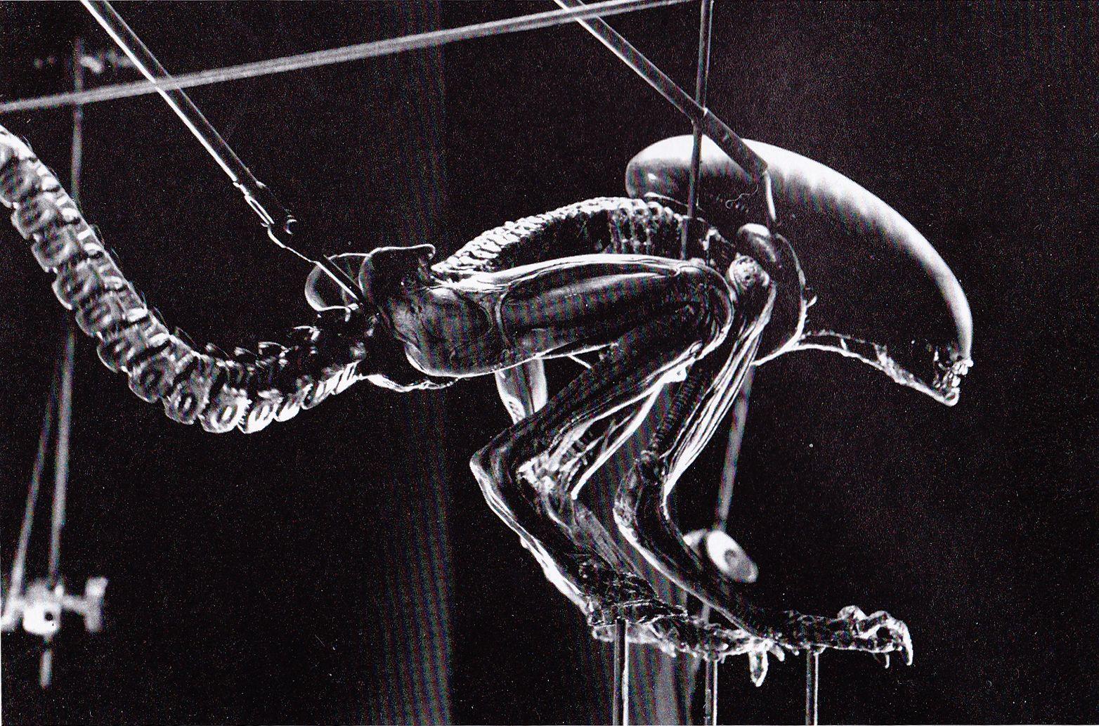 Alien3 Alien adult puppet Alien vs predator, Alien vs