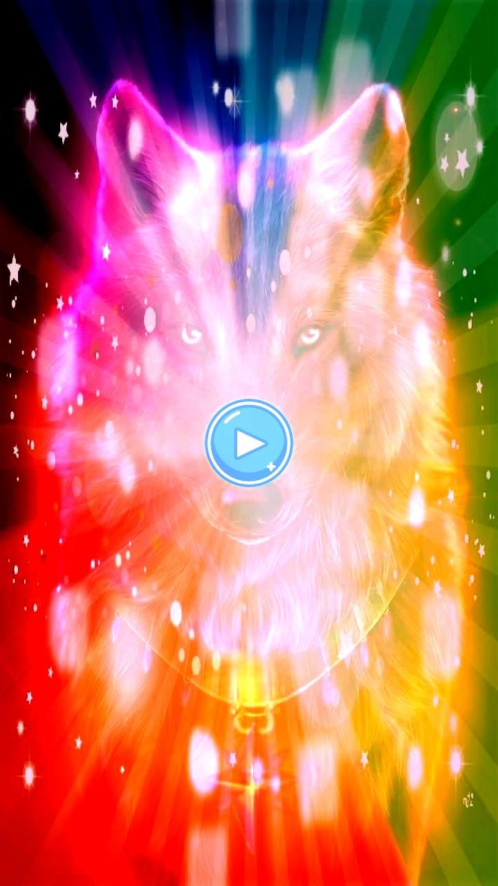 Red wolf Wallpaper von georgekev  1f  Free auf ZEDGE  Durchsuchen mi Downloaden Sie jetzt Red wolf Wallpaper von georgekev  1f  Free auf ZEDGE  Durchsuchen mil  Downloade...