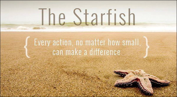Image result for starfish quotes