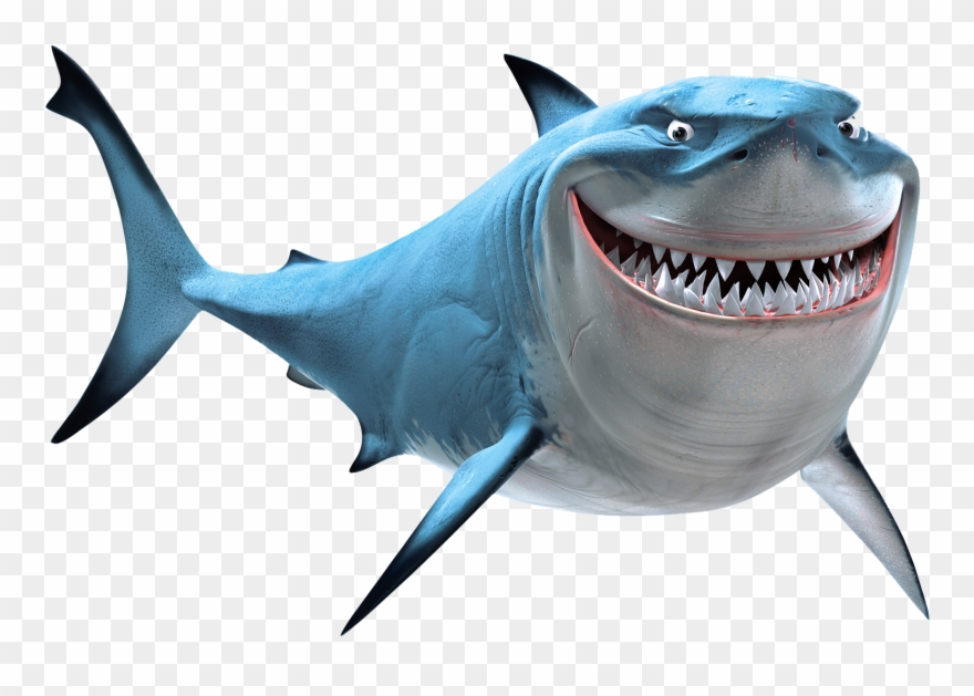 Download Hd Clipart Shark Megalodon Shark Finding Nemo Bruce Png Download And Use The Free Clipart For Your Creative Pro Shark Illustration Shark Megalodon