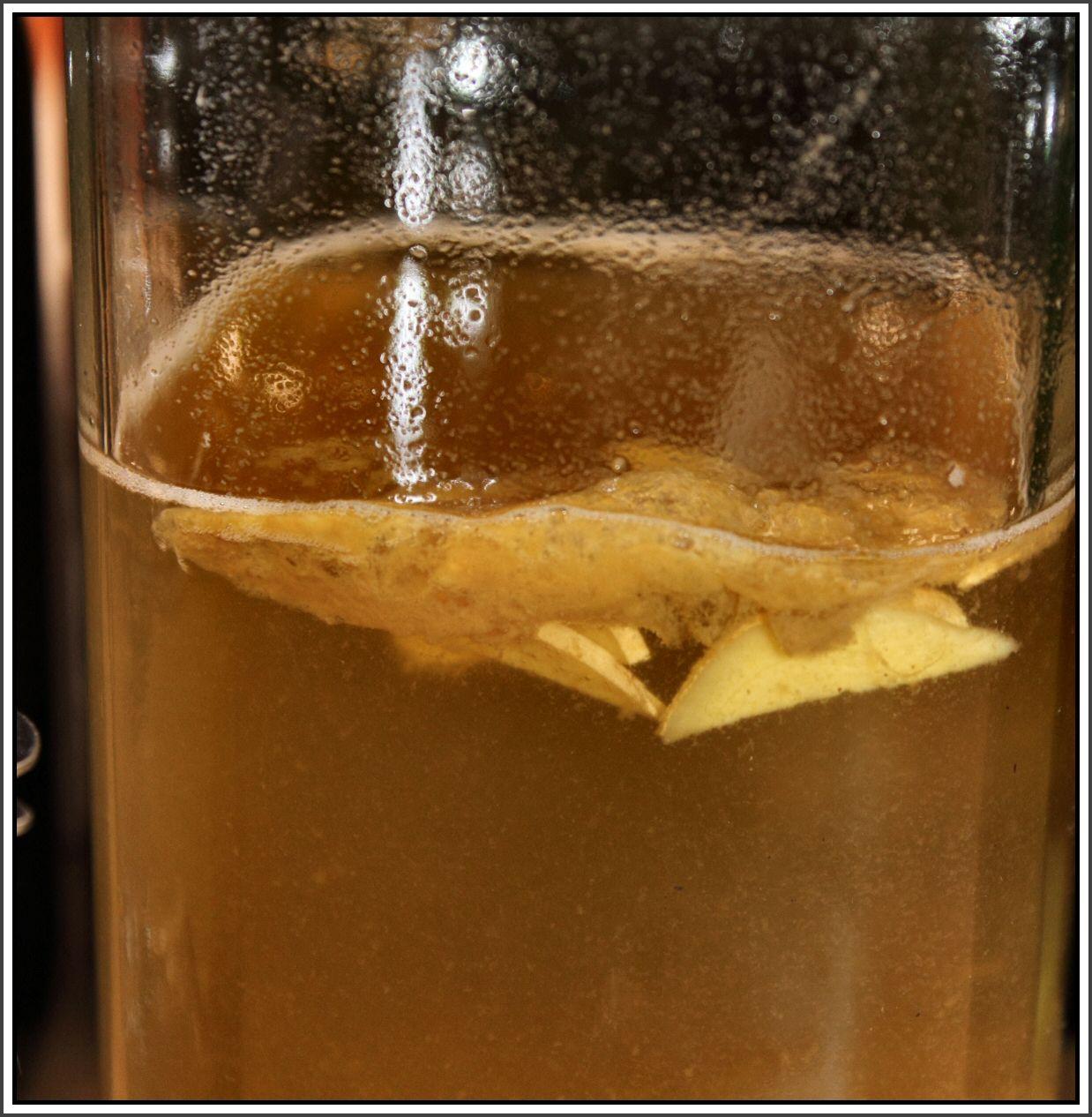 Sliced ginger in second ferment of Jun