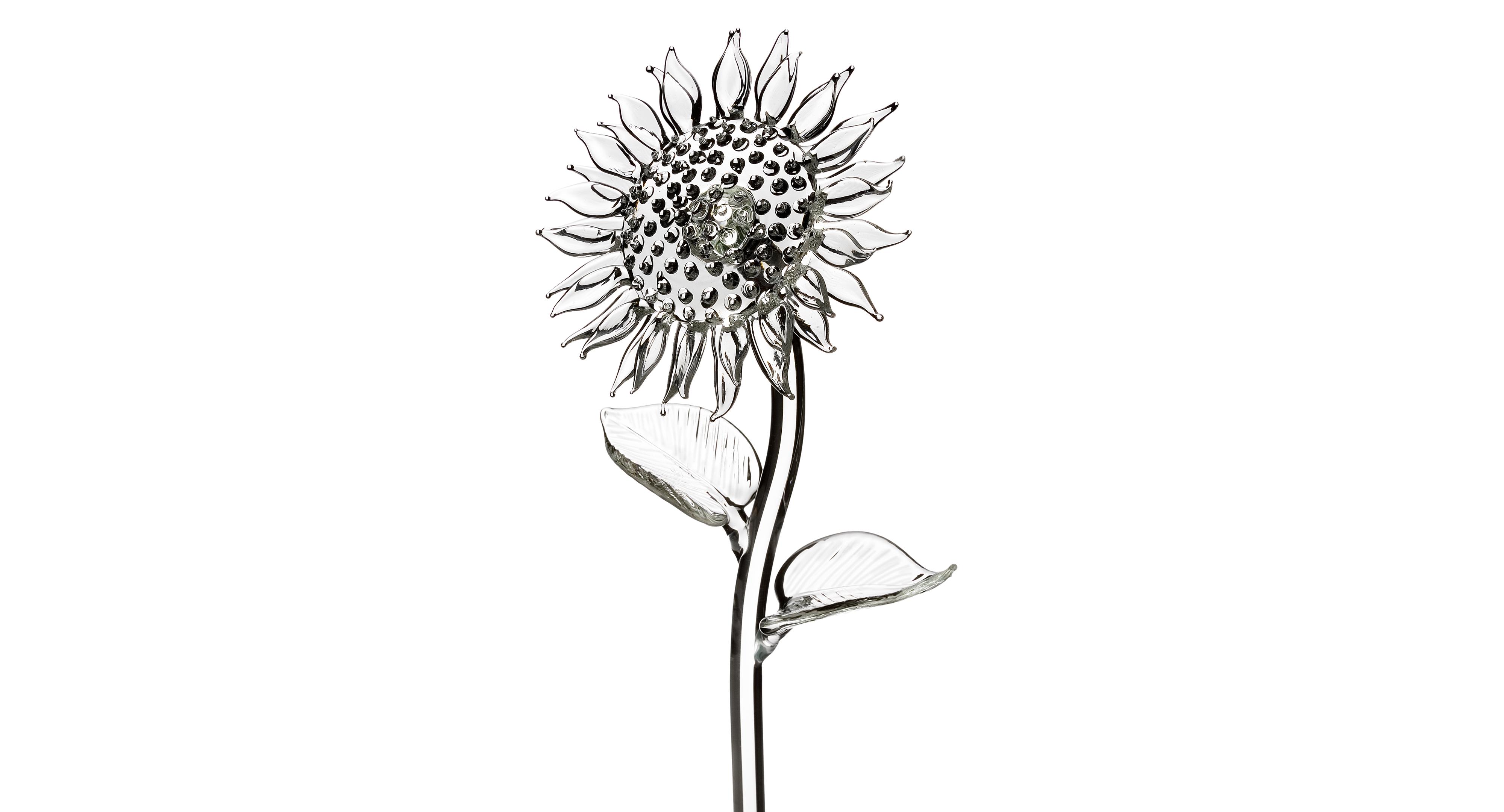 Waterford Gifts, Fleurology Sunflower