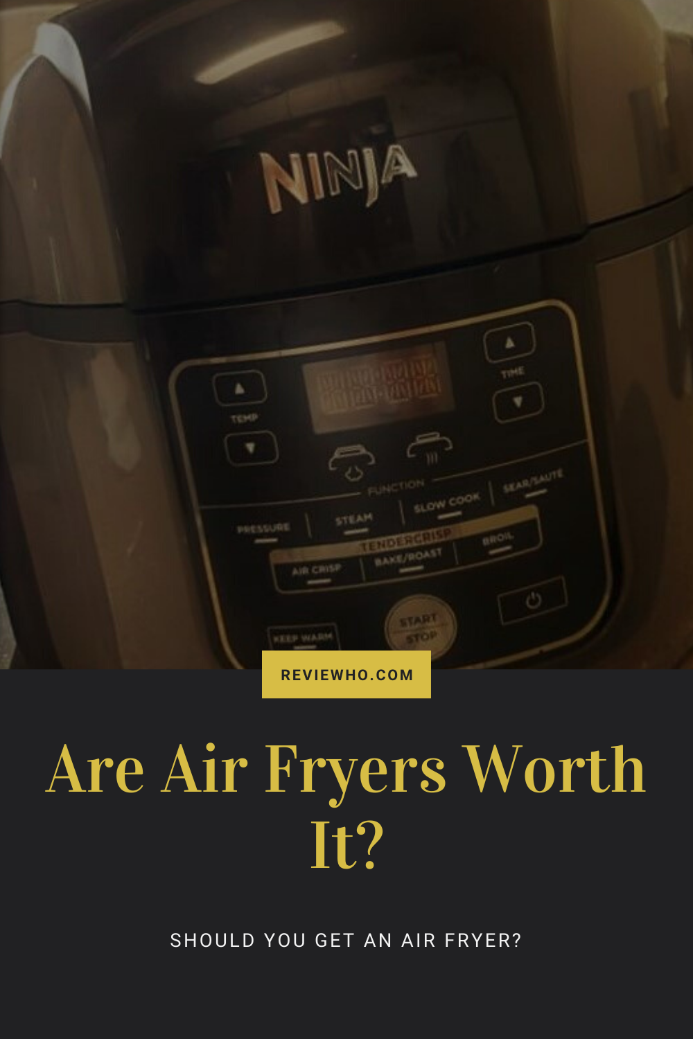Are Air Fryers Worth The Money? Should You Buy One? in