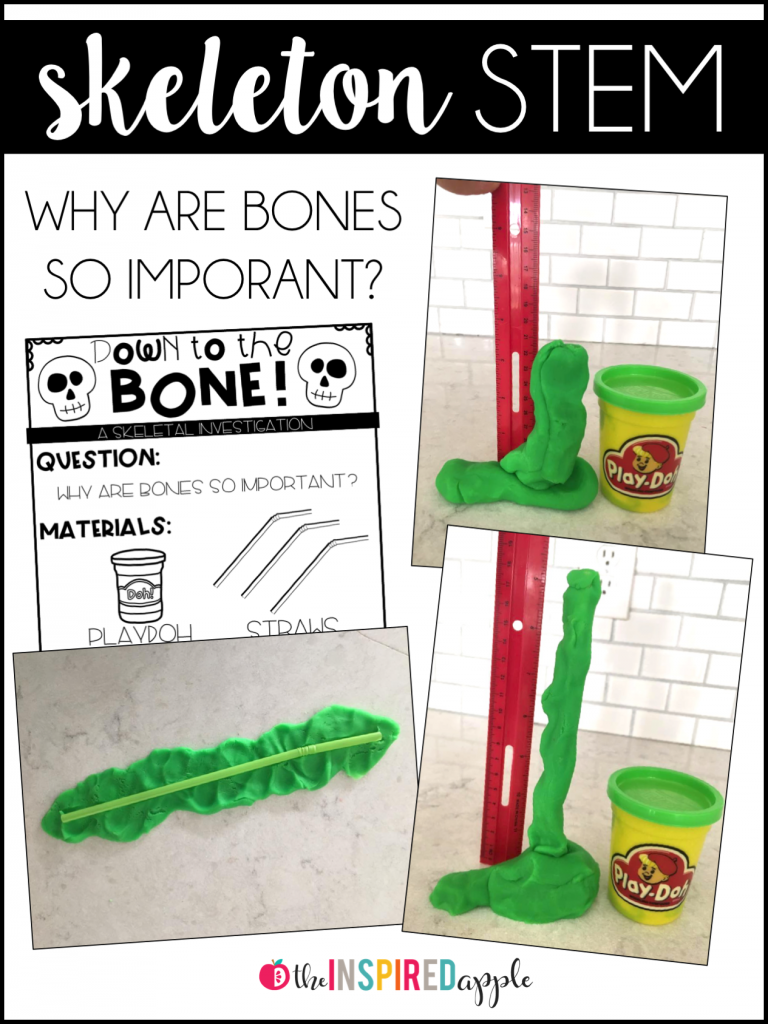 Teaching The Skeletal System Halloween Pinterest Blocks And Augmentedreality App Teaches Kids Circuitry Basics Handson Has Never Been More Fun Your Will Love Learning All About Bones Using These Engaging Activities Books