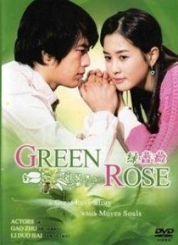 Green Rose All Time Favorite Green Rose