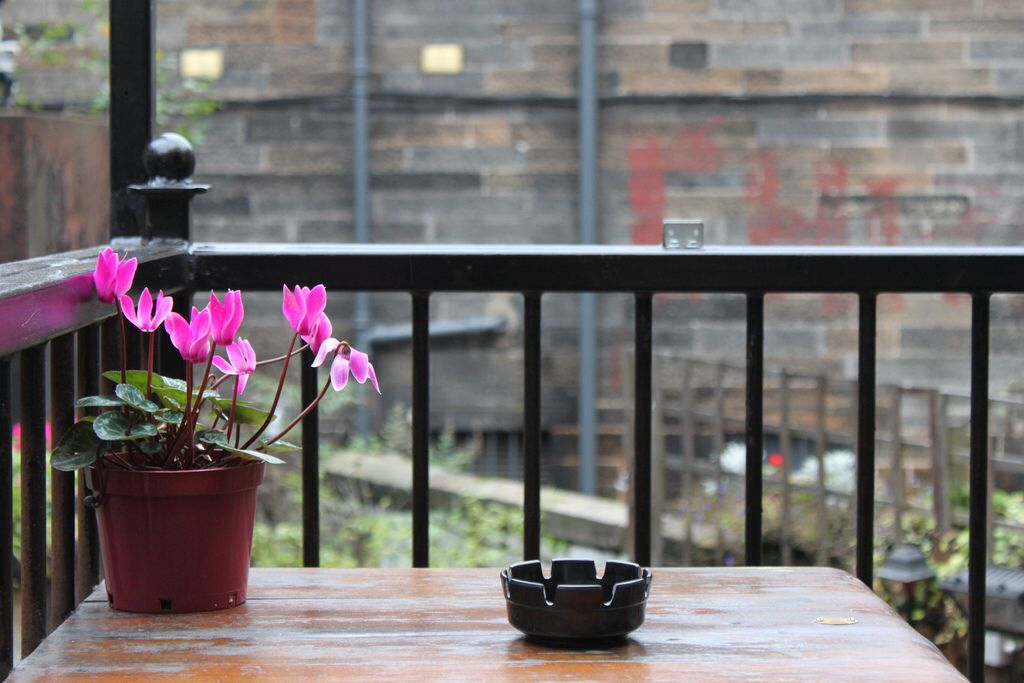 Glasgow Beer Gardens With A Pink Flower Plant Pot Photo By