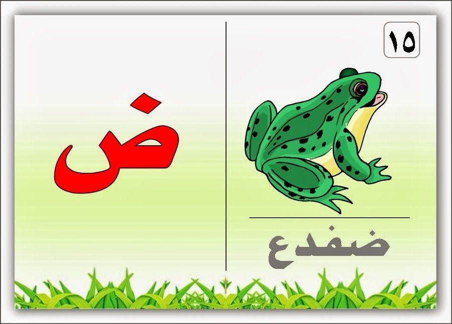 A7ruf موقع اللغة العربية Alphabet Flashcards Arabic Alphabet Learning Arabic