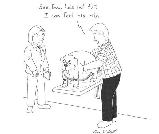 Funny Vet Tech Quotes. QuotesGram   Cartoon Vet Tech