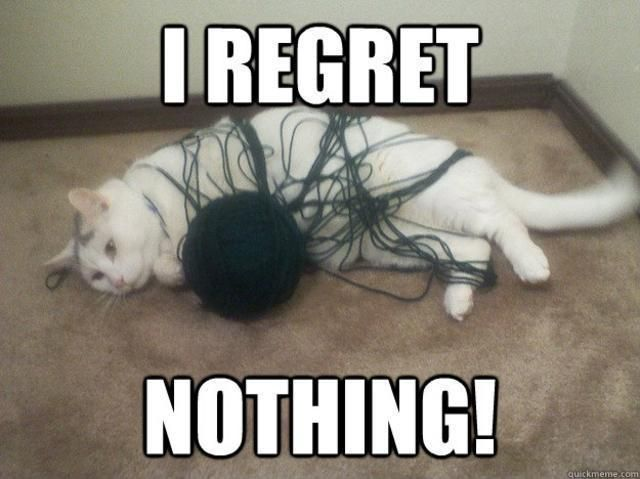 I regret nothing, absolutely nothing... #WeekendRegretsIn5Words  http://www.goodpet.com