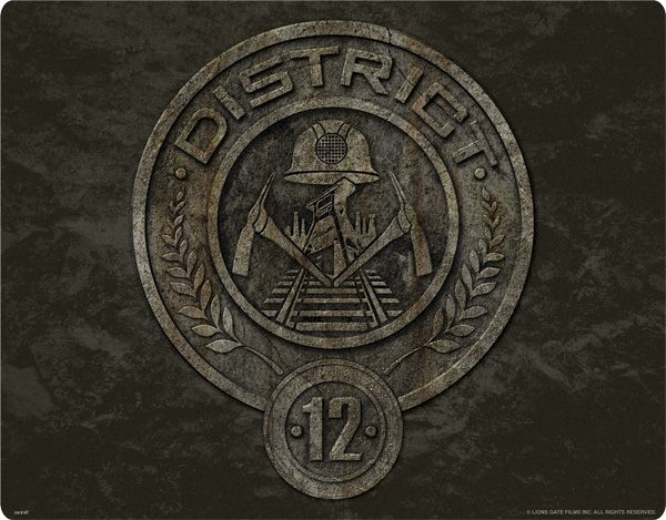 The Hunger Games District 12 Stone Logo Products I Love