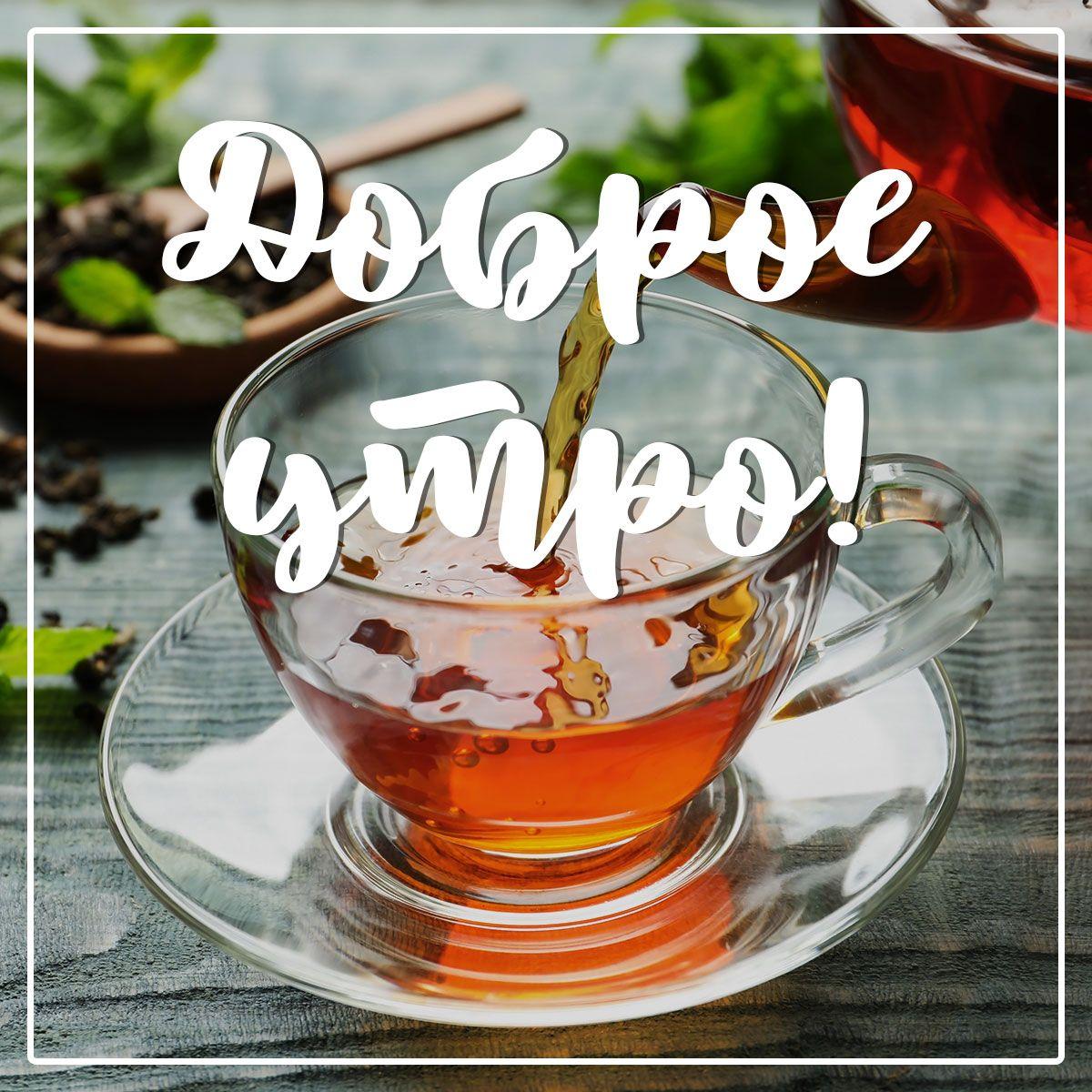 сайт чашка чая
