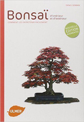 Bonsai d\'intérieur et d\'extérieur | www.maitre-bonsai.fr | Pinterest