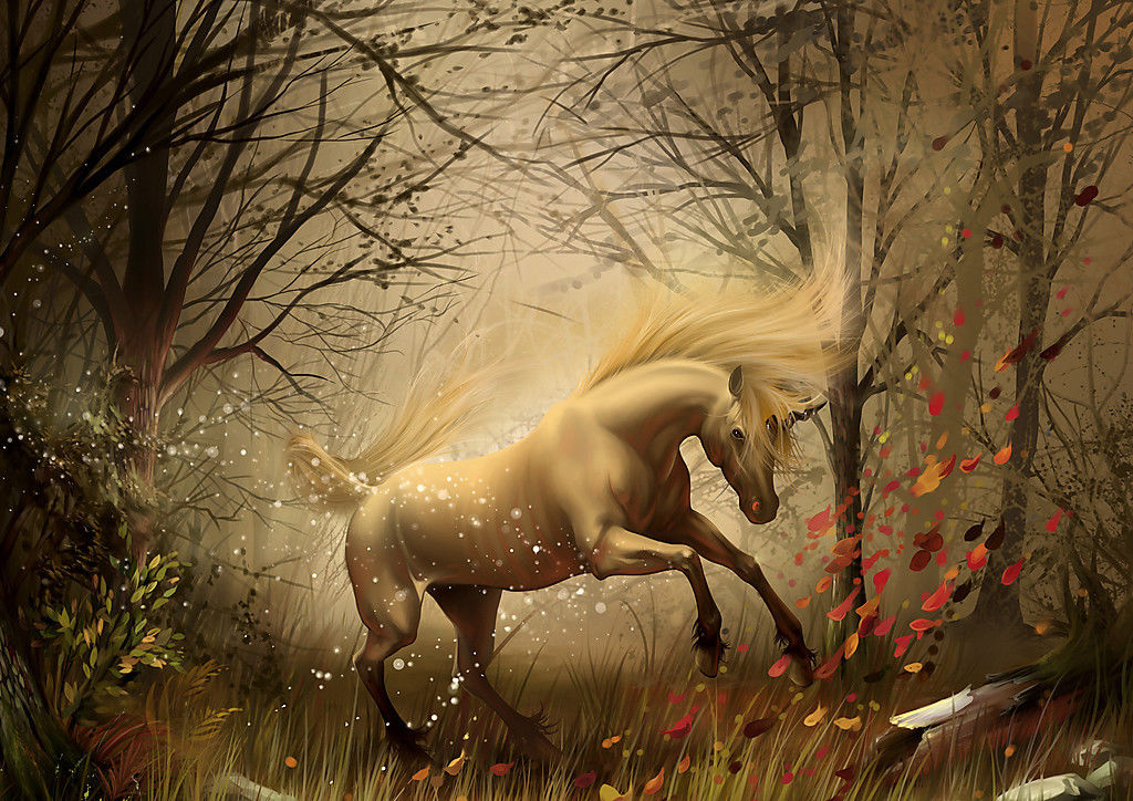 Fantasy Black Horse Home Decor Canvas Print A4 Size 210 x 297mm