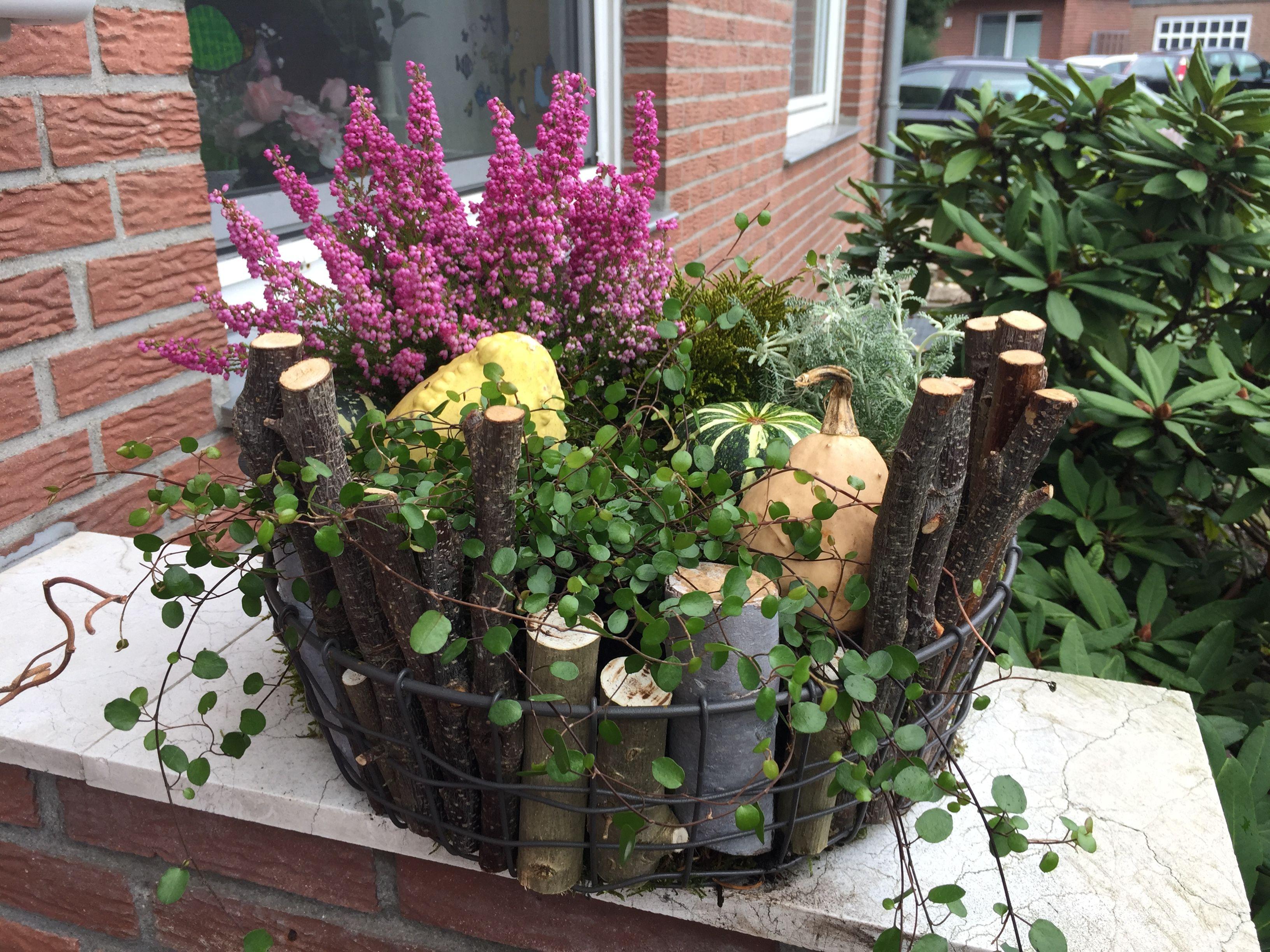 Haus Und Garten Garten Deko Herbst Dekoration