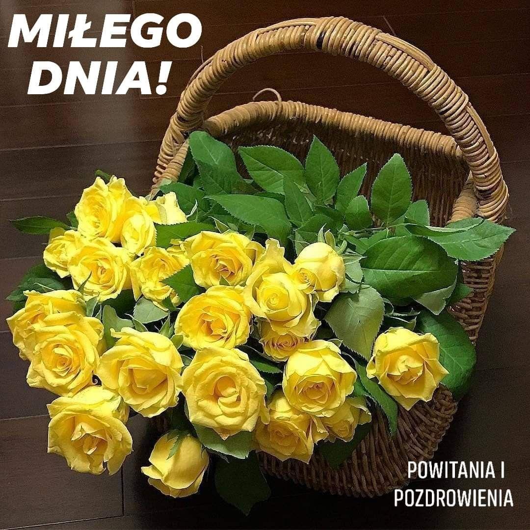 Pin By Maagorzata Zadarko On Dzien Dobry Good Morning Flowers Yellow Roses Morning Flowers