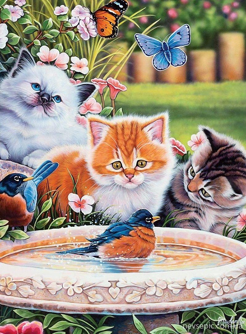 Открытки кошек и котят, винтаж марта
