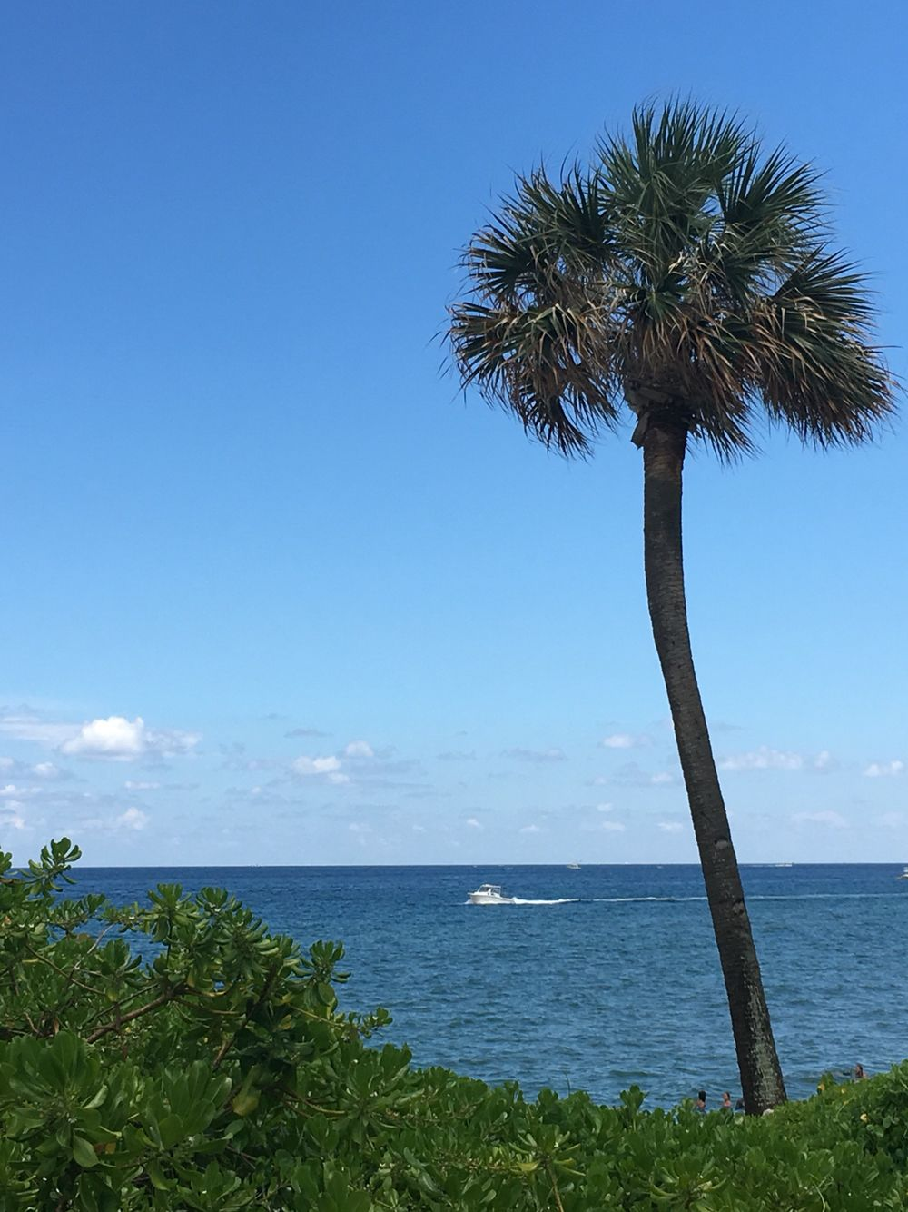 Deerfield Beach, Florida | Beautiful Places! | Pinterest | Deerfield ...