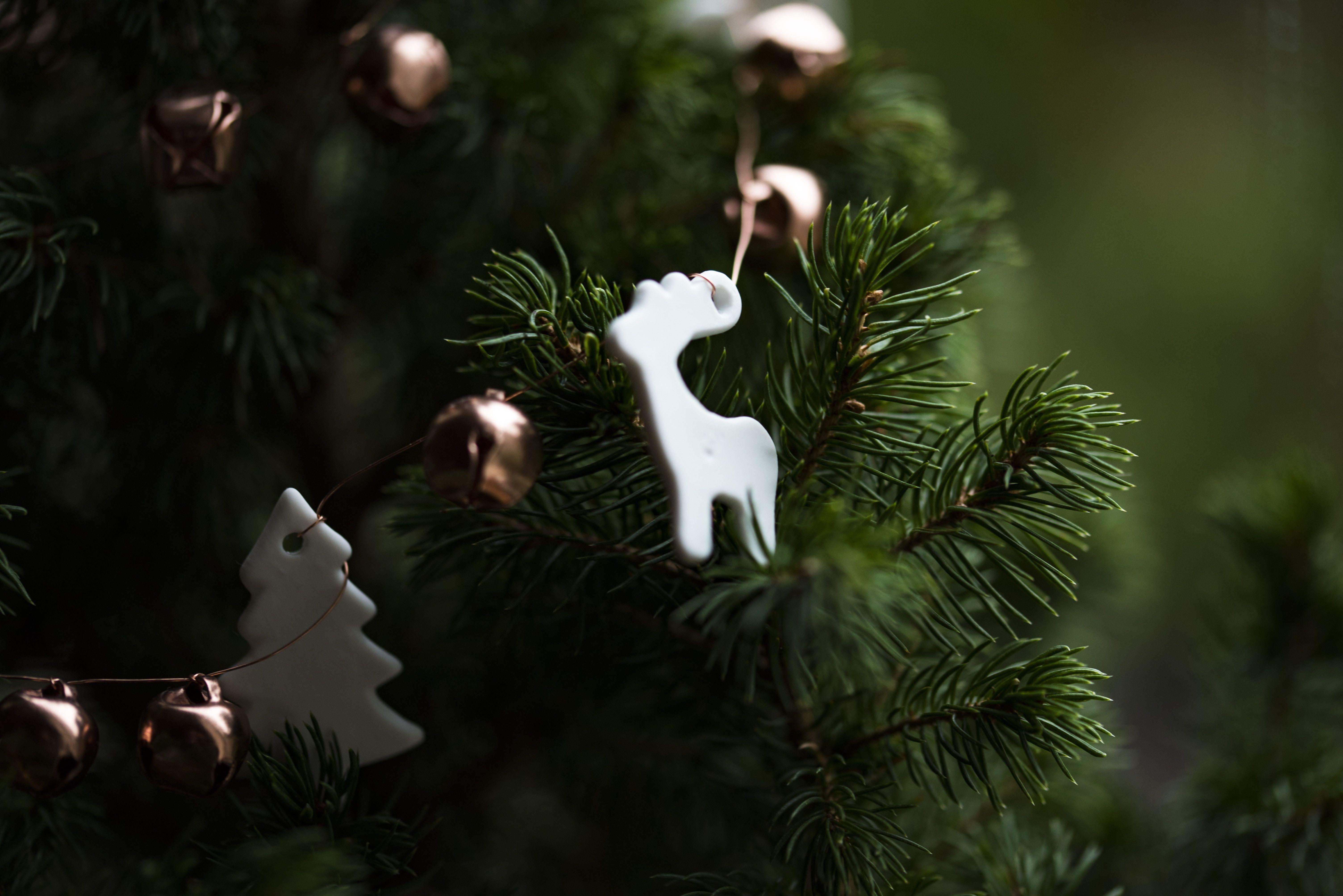 Decorazioni Natalizie Low Cost.Addobbi Natalizi On Line Low Cost Per Case Porte Finestre E Negozi Decorazioni Albero Di Natale Idee Di Viaggio Decorazioni
