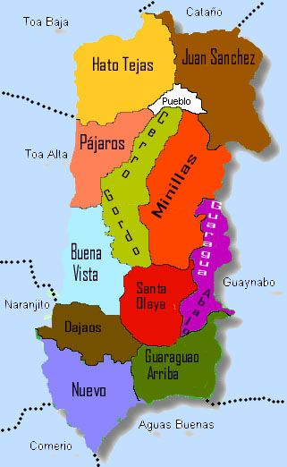 Towns of Bayamn Puerto Rico BAYAMN La Ciudad del Chicharrn