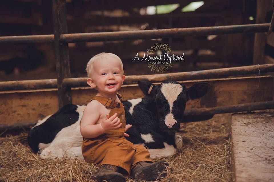 b7163eb68 Carhartt baby. farm baby. calf and baby. farm photoshoot | Walker ...
