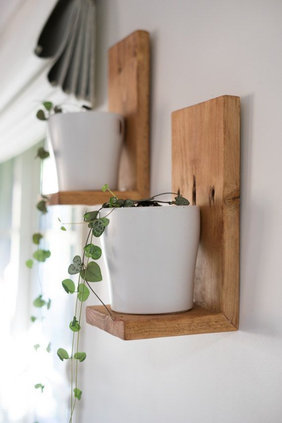 Simple and clean floating shelves to hang plants | Timber floating shelves, Decor, Plant shelves – home