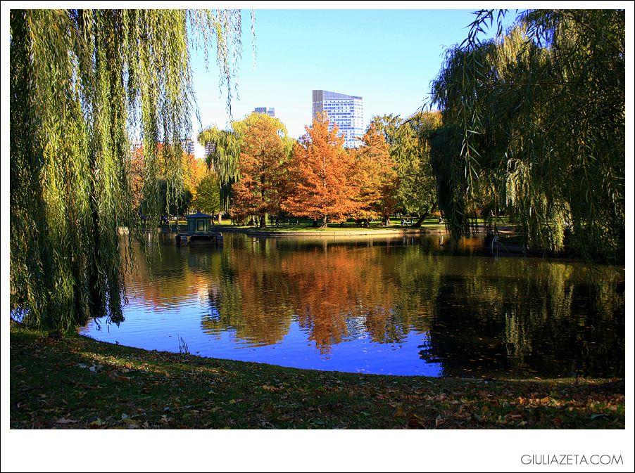 Red foliage at the Boston Common gardens, #Boston, MASSACHUSETTS fall 2011 | fogliame nel Boston Common, Boston, MASSACHUSETTS autunno 2011 [copyright GIULIAZETA.COM]