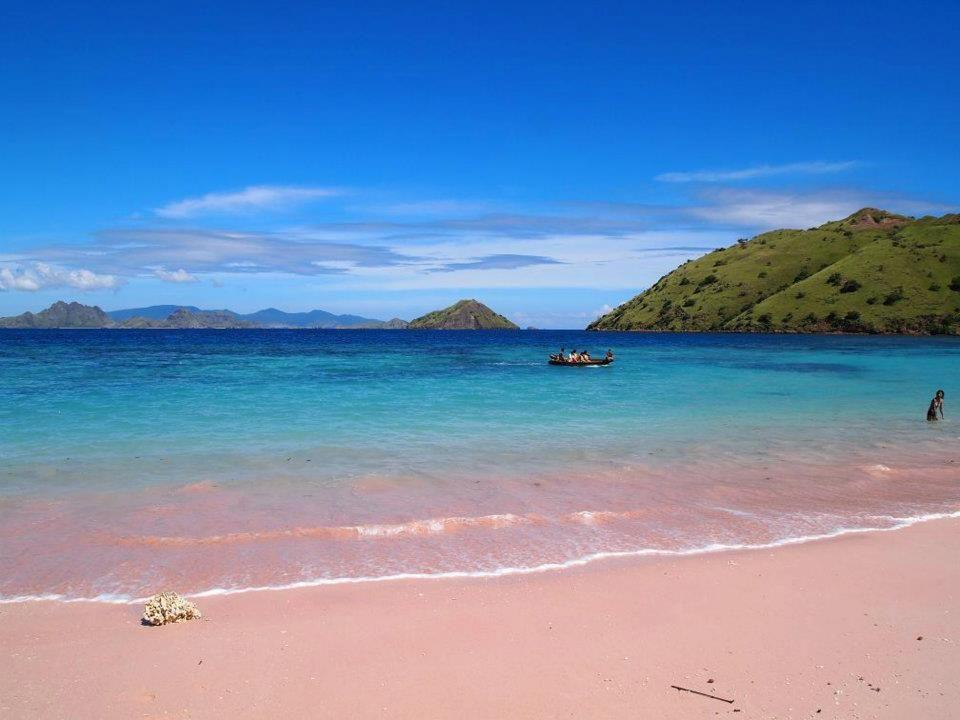playa rosa en Komodo