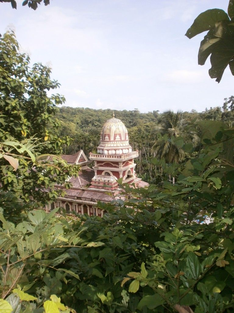 Temple Hidden In Jungle - I Took This On My Way From -3984