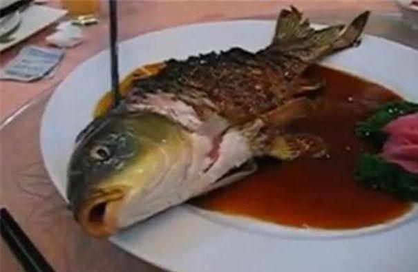 Strangest Foods Around The World Weird Food Bizarre Foods Food
