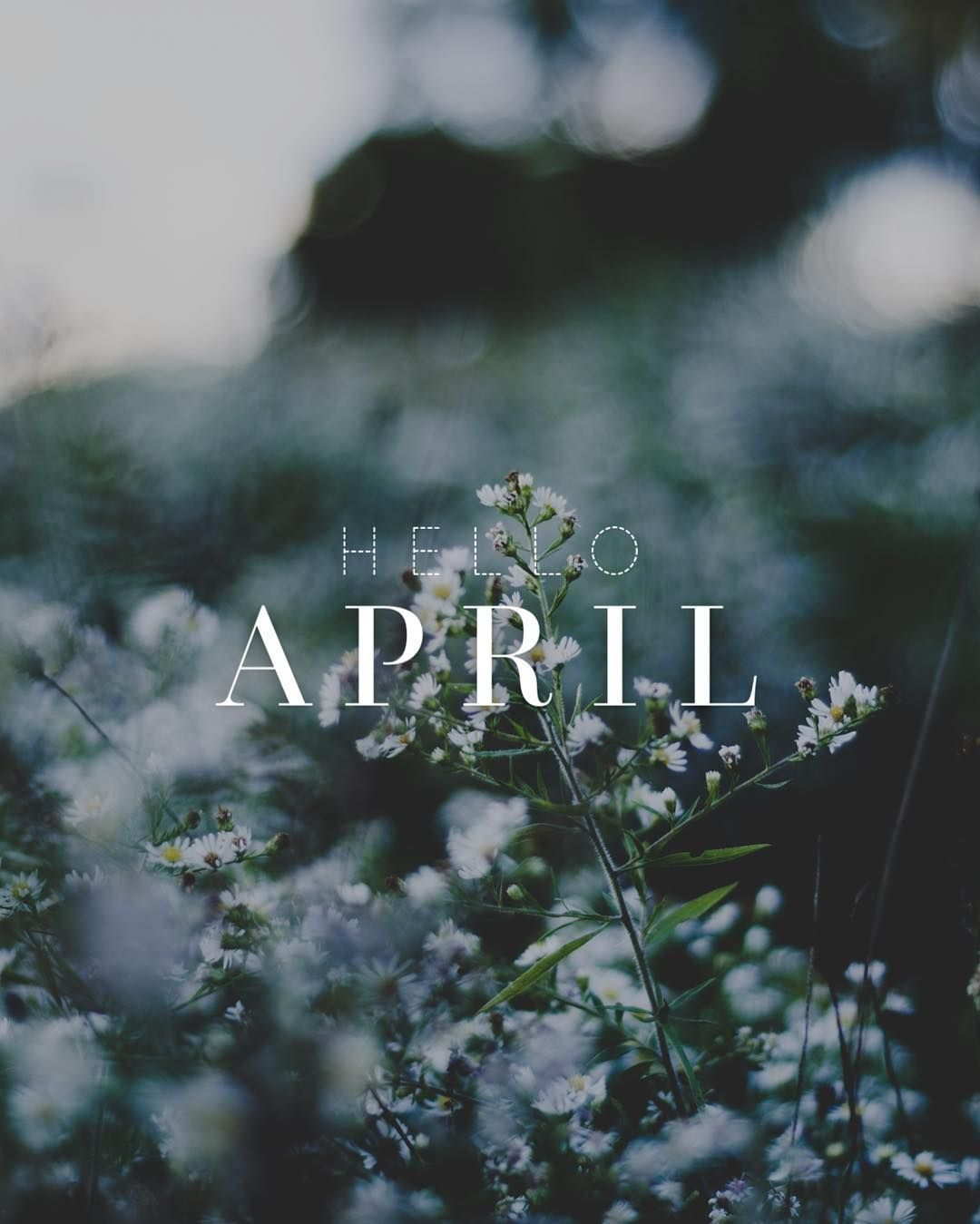 Hello April Please Be Good To Us Piclab Spring Wallpaper