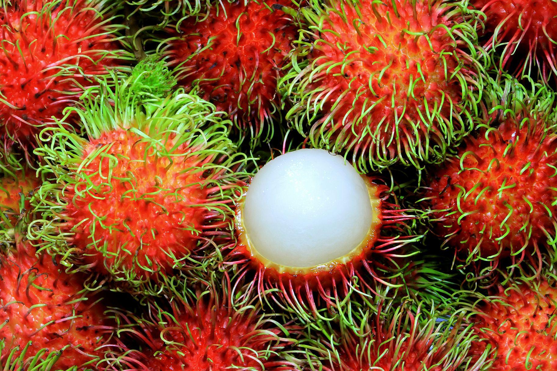 Pin On Fantastic Fruits