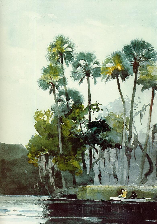 Homosassa River Winslow Homer Paintings Painting Art