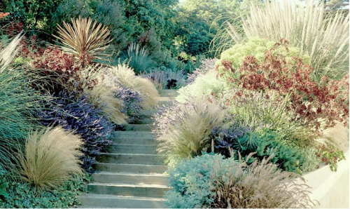 round up of daily gardens from southern california studio g garden design and