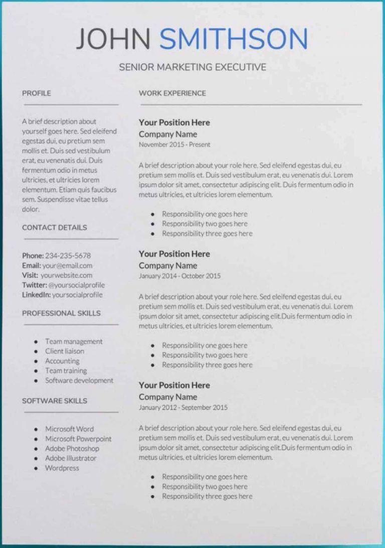 free modern executive resume template