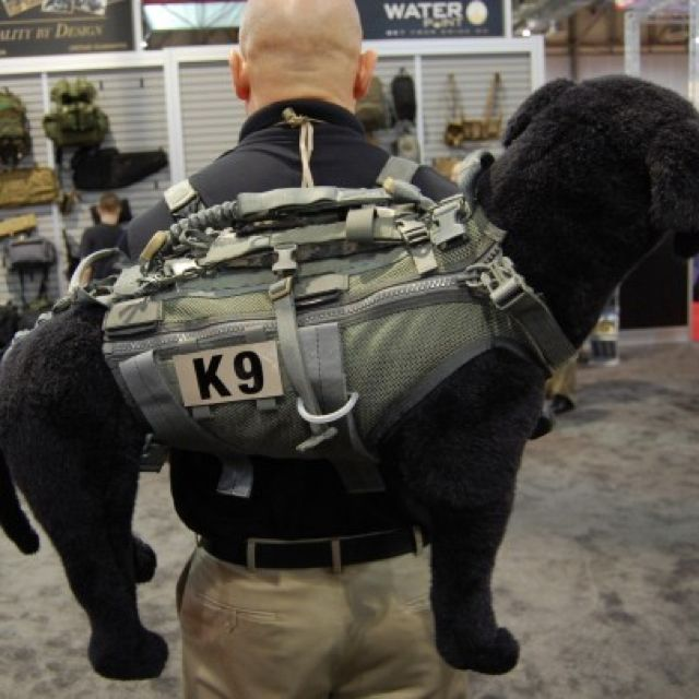 K9 Assault Vest Military Dogs Military Working Dogs War Dogs