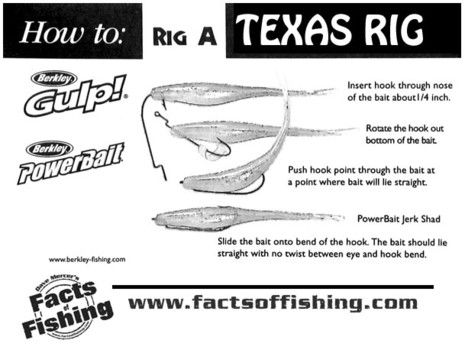 465 350 pixels for Texas rig bass fishing