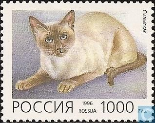 Postage Stamps - Russian Federation - Cats